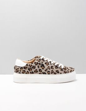 Maruti Ted Sneakers Kf8 Leopard Elephant Grey-blac 116312-29 1